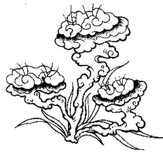 """在北京故宫博物院和颐和园的陈设中,还有象征多头灵芝的""""如意树"""