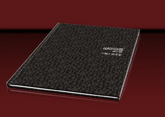 现代风格的服装(女装)企业形象画册设计作品